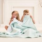 Aden + Anais Classic Dream Blanket Metallic