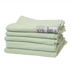 Lodger Swaddler 2 pcs set Leaf